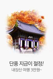 단풍 지금이 절정! 내장산 여행 3만원~