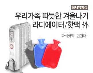 롯데백화점 라디에이터/핫팩 외 /파쉬핫팩 1만원대~