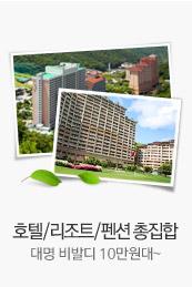 호텔/리조트/펜션 총집합 대명비발디 10만원대~
