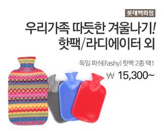 롯데백화점 독일 파쉬(Fashy) 핫팩 2종택1 15,300원~