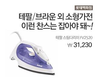 롯데백화점 테팔 스팀다리미 FV2520 31,230원